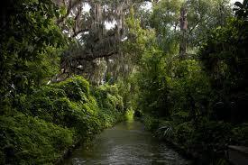 Winter Park Florida Water Canal - /ealexander_pending.com