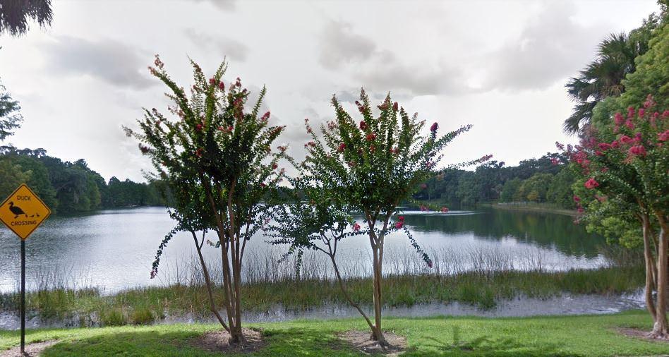 Luxury Living on Lake Cherokee